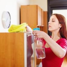 Как избавиться от пылевых и бельевых клещей