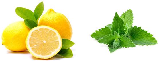 Как убрать запах после ремонта (запах краски, штукатурки, клея)