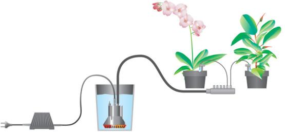 Автоматический полив цветка
